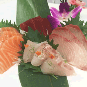 SASHIMI-Regular